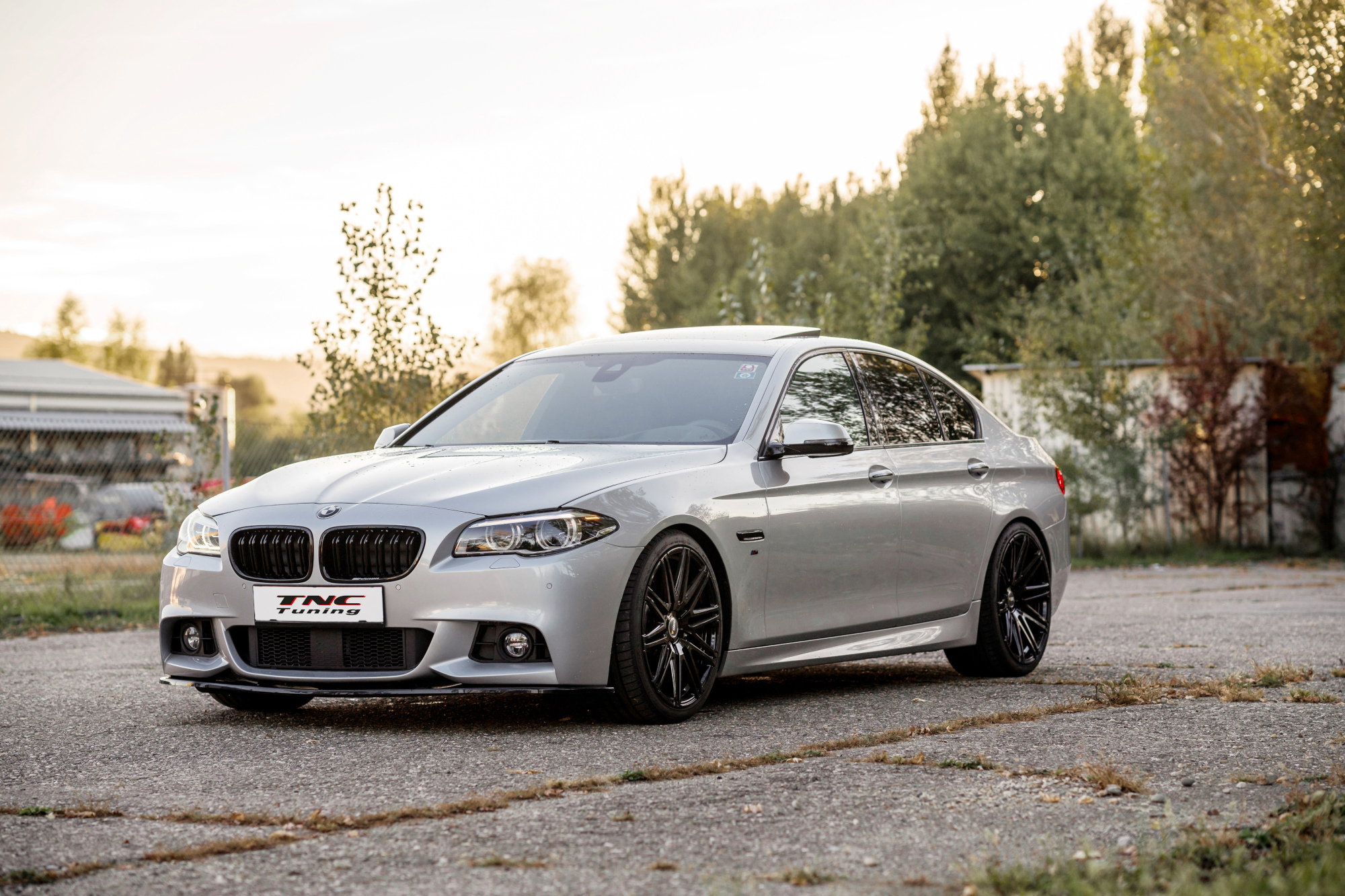 BMW 5er F10 Twin-Monotube Felgen